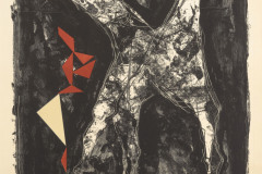 Cavalier noir sur fond étoilé